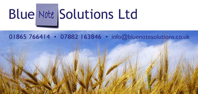 Blue Note Solutions Ltd